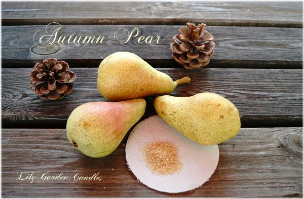 Autumn Pear  Country House Jar medium